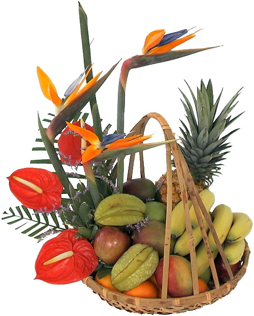 tropical-flowers-and-fruit